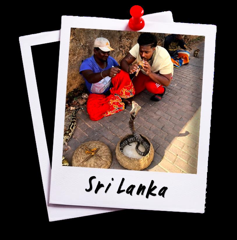 Sri Lanka - David Castain Destinations