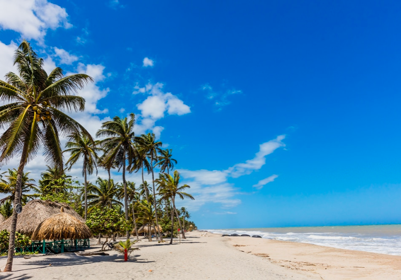 Bask On The Beach - Colombia