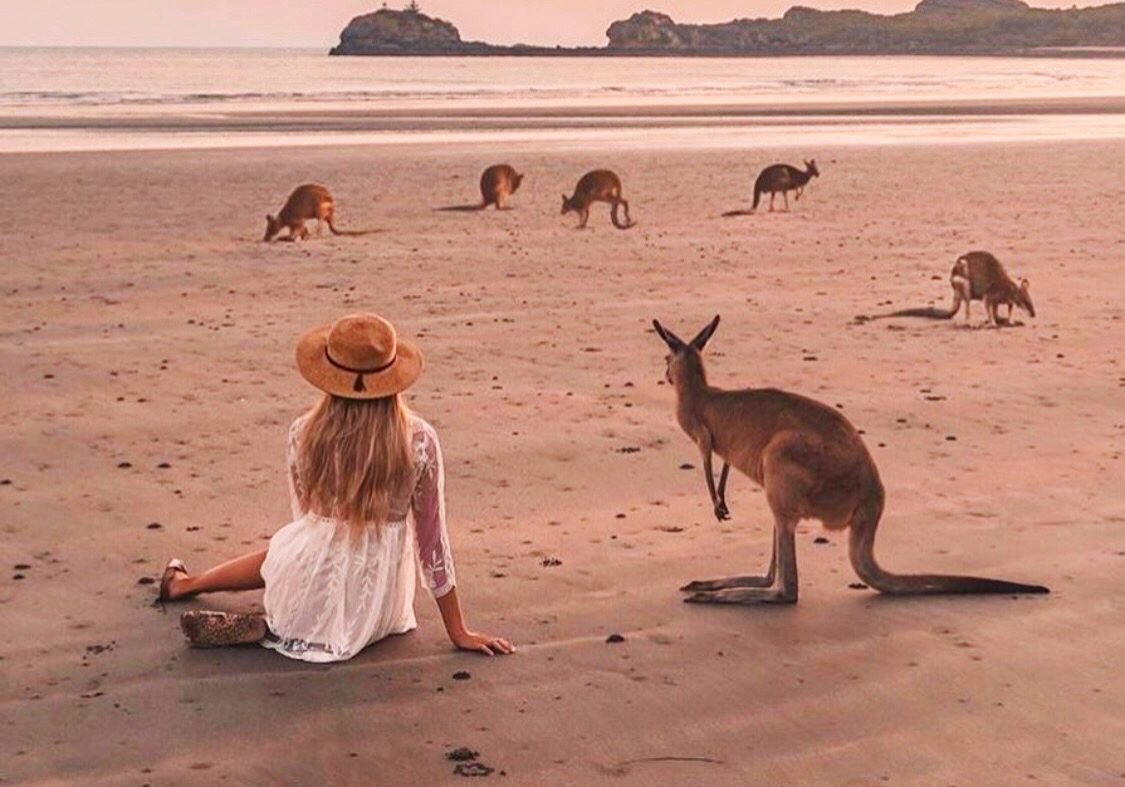 Cape Hillsborough, Queensland - Australia