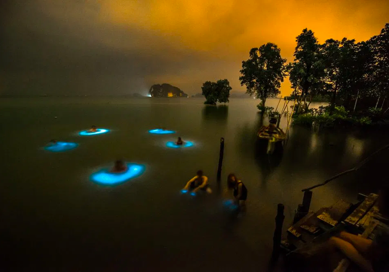 Light Up The Waters - Colombia